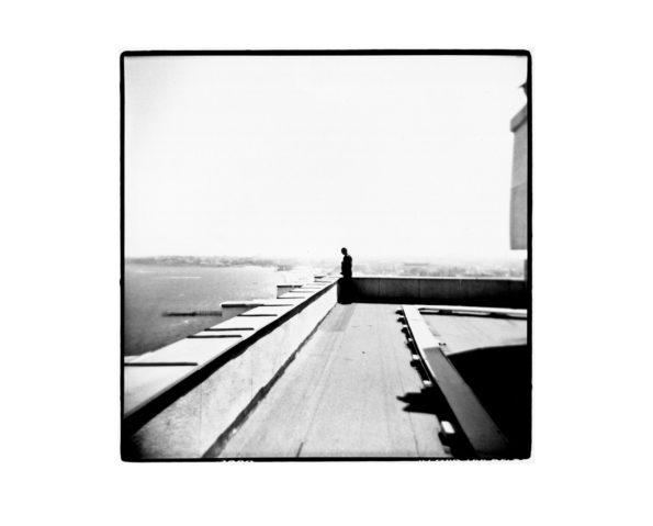 Roof / Adam Lach