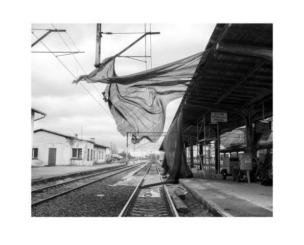 Wind / Adam Lach