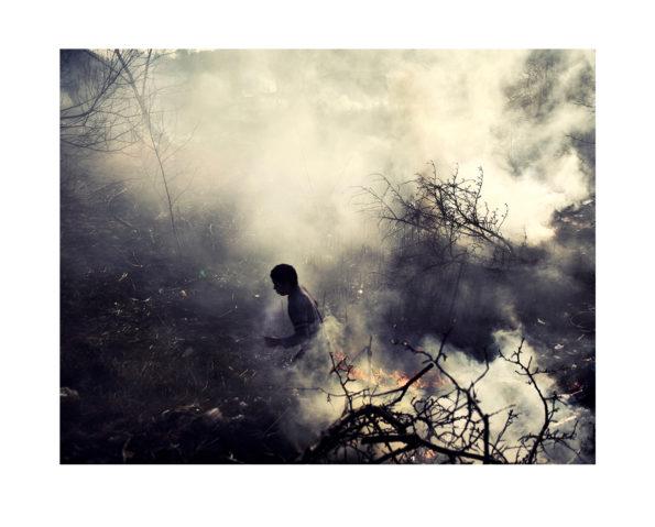 Fire / Adam Lach